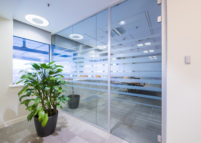 Glass door and green plant in corridor in bright modern office
