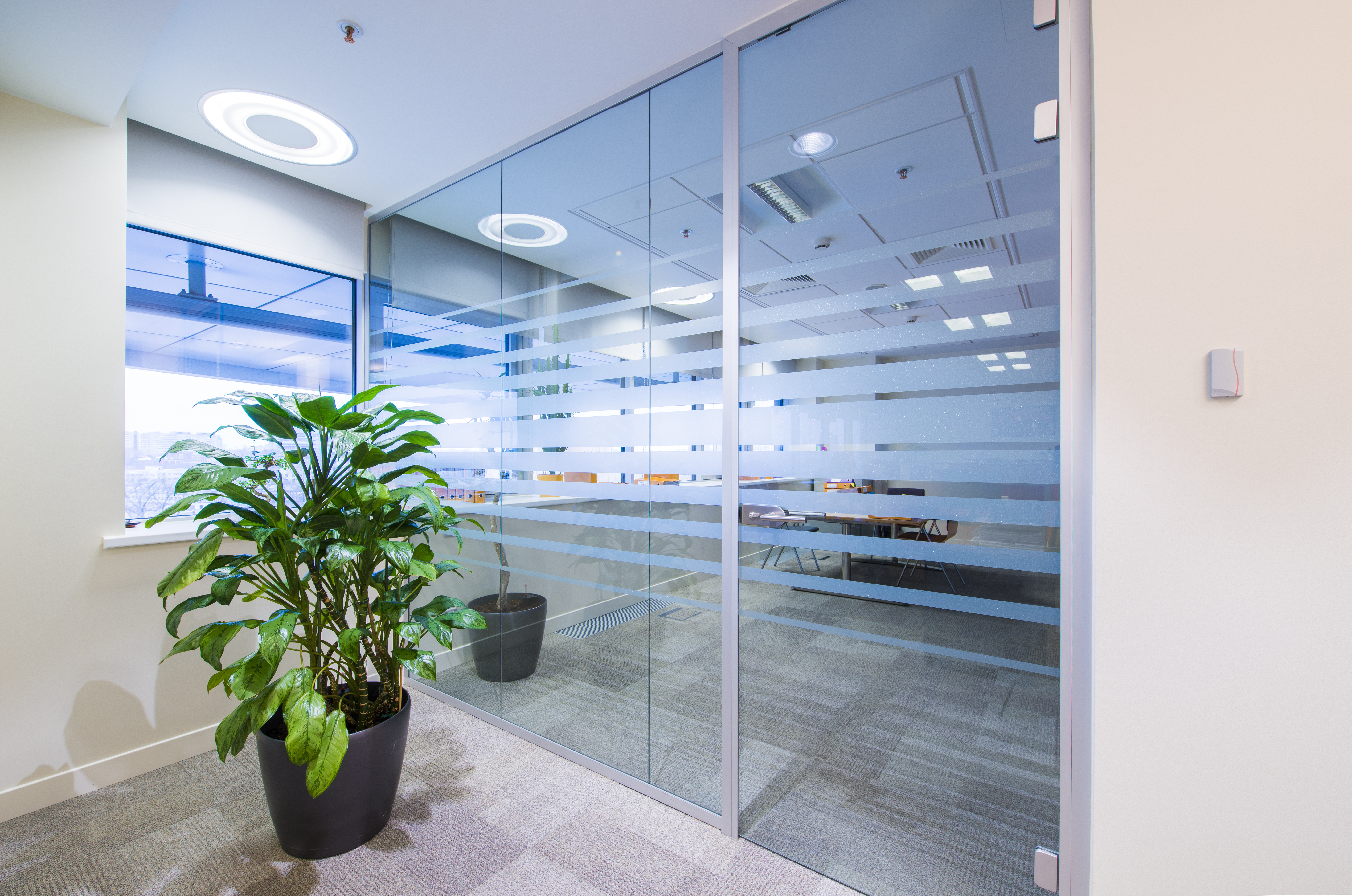 Glass Walls Part - 47: Glass Walls, Office Walls And Glass Partitions Are Our Specialty.